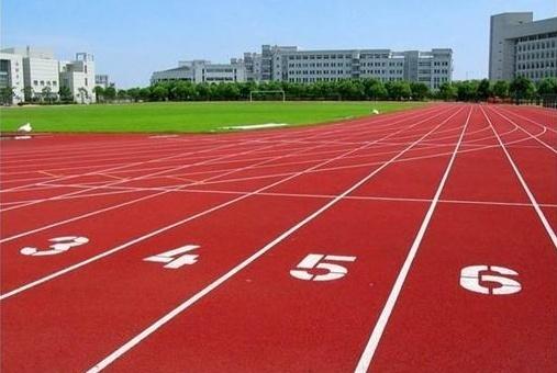 德州市禹城辛寨小學200米標準跑道鋪設